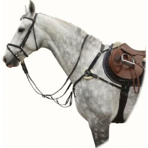 2134 Poprsník Palermo kožený Kentaur