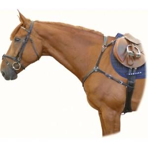 2149 Poprsník Parnas kožený Kentaur