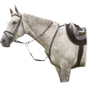 2156 Poprsník Arras kožený honební Kentaur