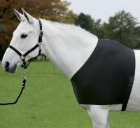 Elastická vesta pro koně Waldhausen